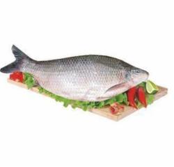 Peixe Curimbata Eviscerado kg.