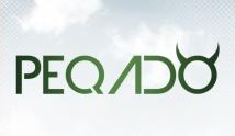 IV Peqado