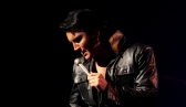 The King is Back - Elvis Tribute