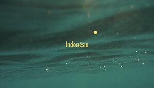 INDONESIA | 52 days, 4 islands