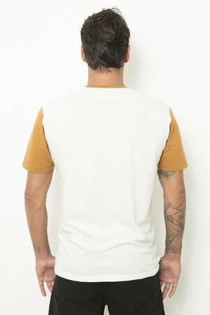 T-shirt Shark