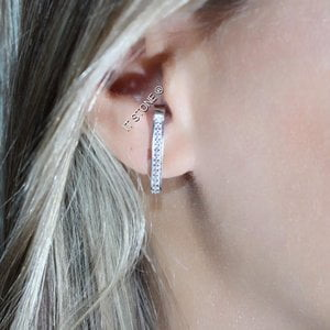 Ear Hook Zirconias