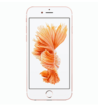 iphone 6s 64gb rose bom