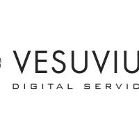 Vesusvius Refratarios