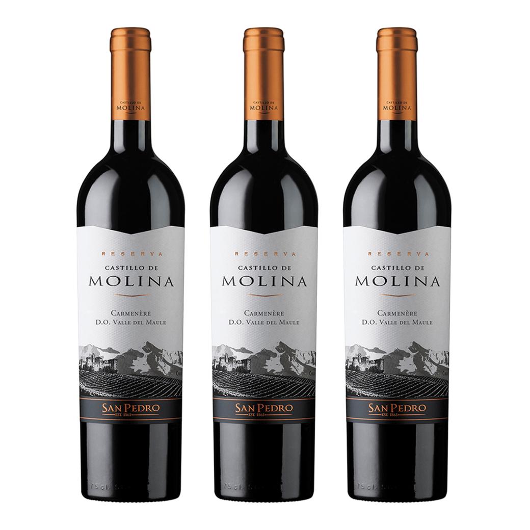 3x Vino Castillo De Molina Reserva Carmenere 750cc