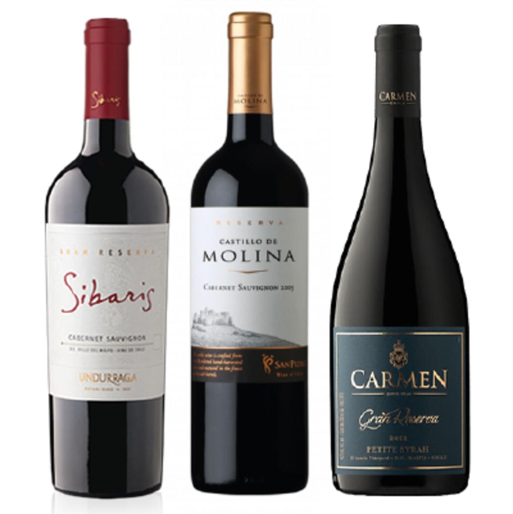 PACK GRAN RESERVA: Undurraga Sibaris Cabernet + Castillo De Molina Cabernet + Carmen Petite Syrah