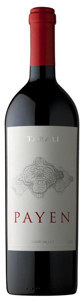 Vino Tabalí Payen Syrah 750cc