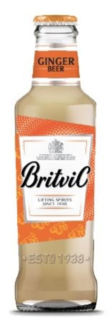 Britvic Ginger Beer 200cc