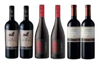 2x Vino Toro de Piedra Cabernet Sauvignon 750cc + 2x Vino Veramonte Pinot Noit Reserva 750cc + 2x Vino Marques de Casa Concha Cabernet Sauvignon 750cc