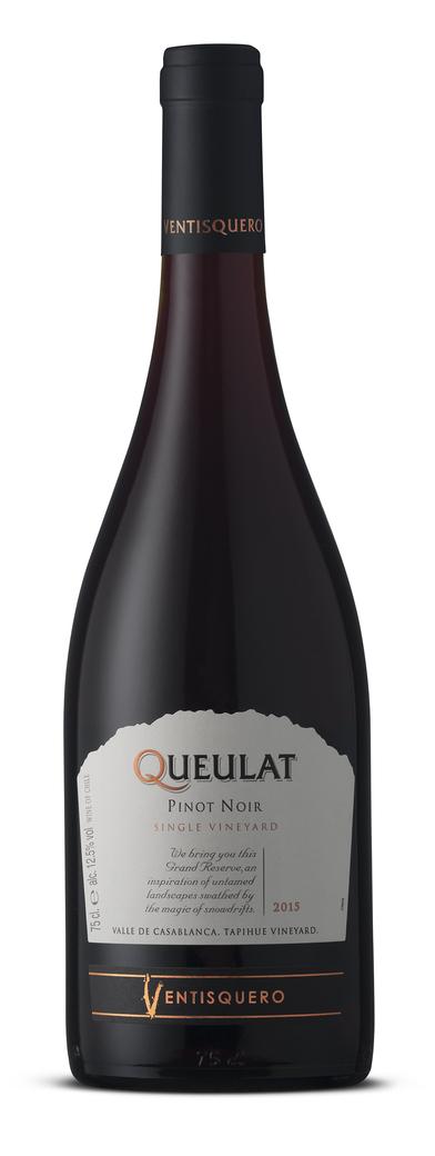 Vino Ventisquero Queulat Pinot Noir 750cc