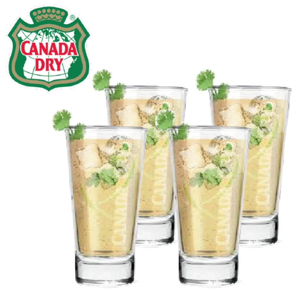 Pack 4 Vasos Canada Dry
