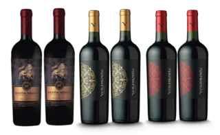 2x Vino Toro De Piedra Carmenere/Cabernet Sauvignon 750c + 2x Vino Veramonte Carmenere Reserva 750cc + 2x Vino Veramonte Cabernet Sauvignon 750cc