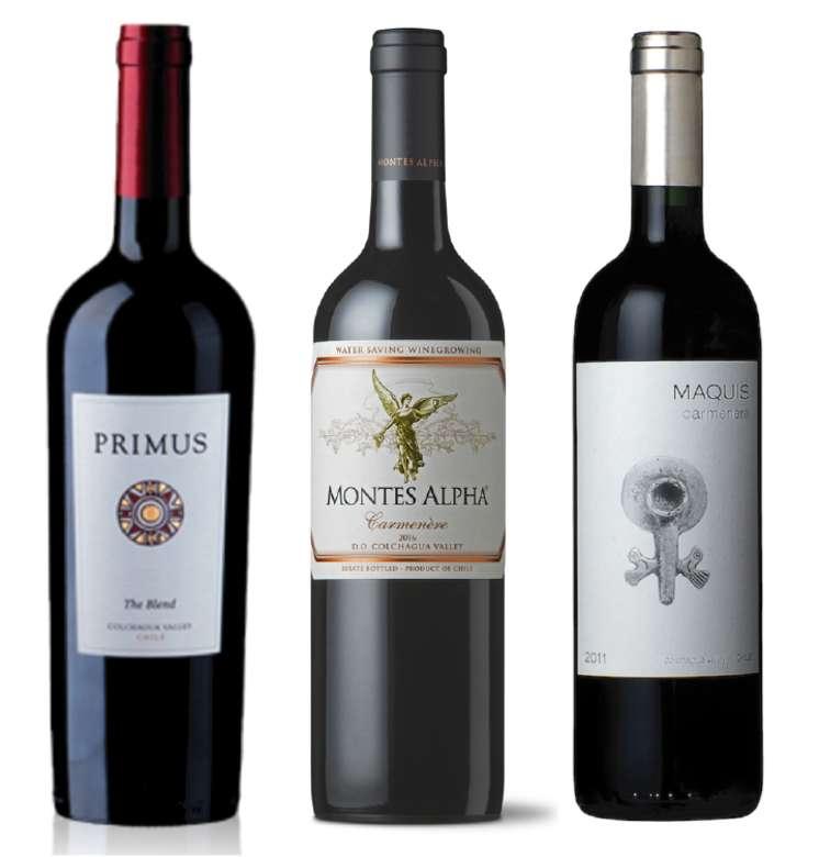 PACK PRIMUS MONTES MAQUIS (Carmenere): Vino Veramonte Primus The Blend 750cc + Vino Montes Alpha Carmenere 750cc + Vino Maquis Gran Reserva Carmenere 750cc