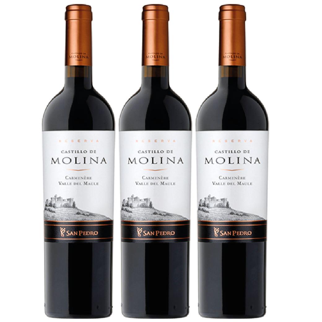 3x Vino Castillo De Molina Carmenere 750cc