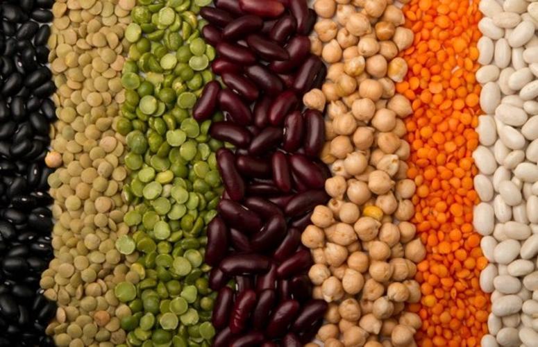 Leguminosas, seus fatores antinutricionais e como combate-los