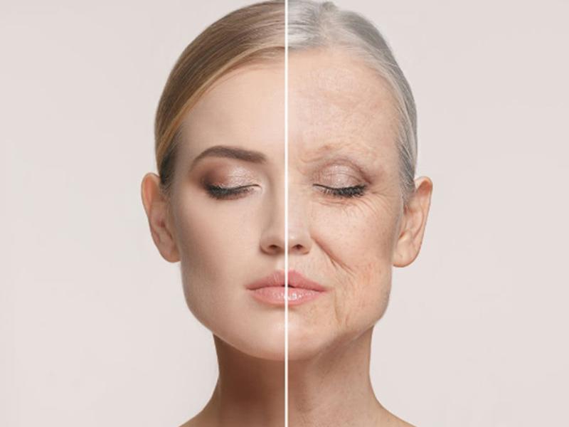Entendendo o processo de envelhecimento celular