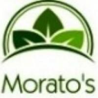 Morato's
