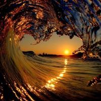 Lanhonete na onda do surf burgue