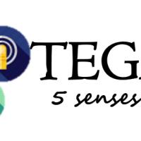 TEGAM 5 Senses