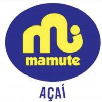 Mamute Aracruz