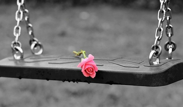 Pink rose on empty swing 3656894 640