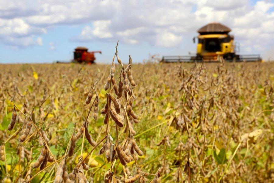 Agricultura jaelson lucas aenoticias
