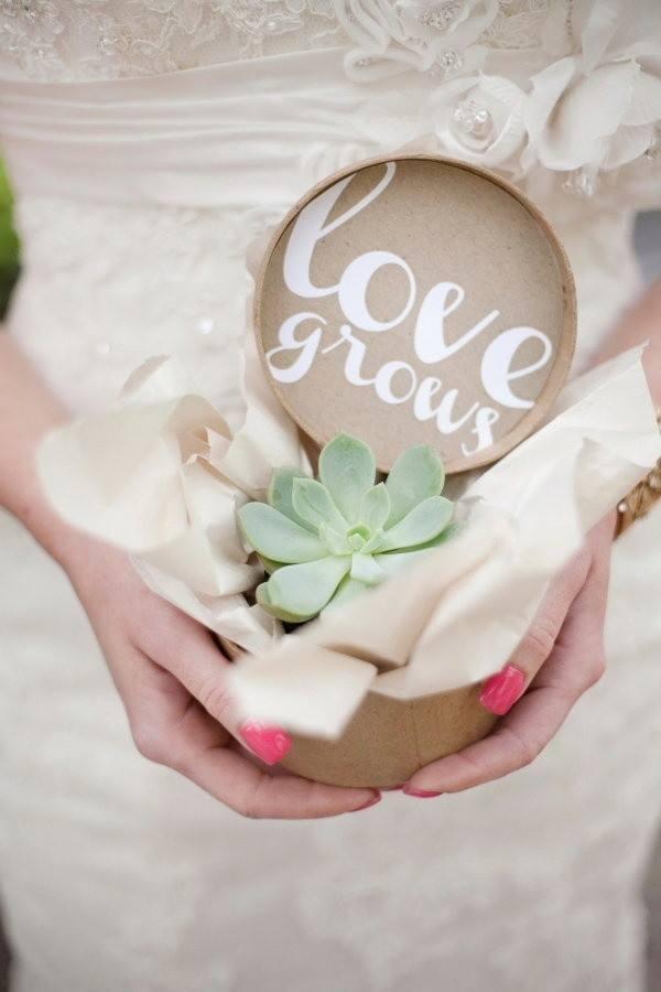 Lembrancinhas-de-casamento-com-suculentas (31)