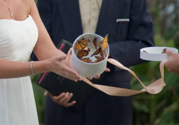 borboletas-casamento-02