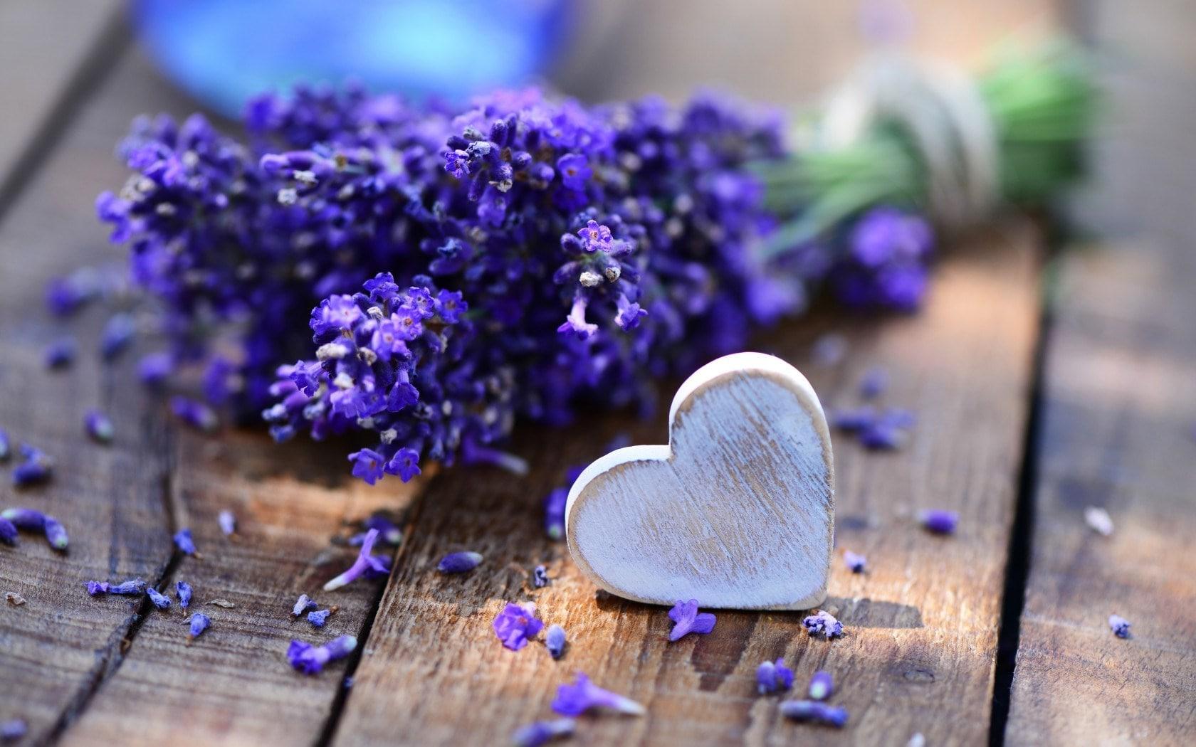 10 ideias românticas de buquês de lavanda