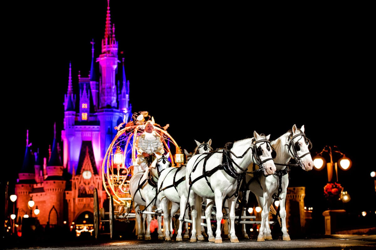 Casamento na Disney: saiba como funcionam as cerimônias noturnas no Magic Kingdom