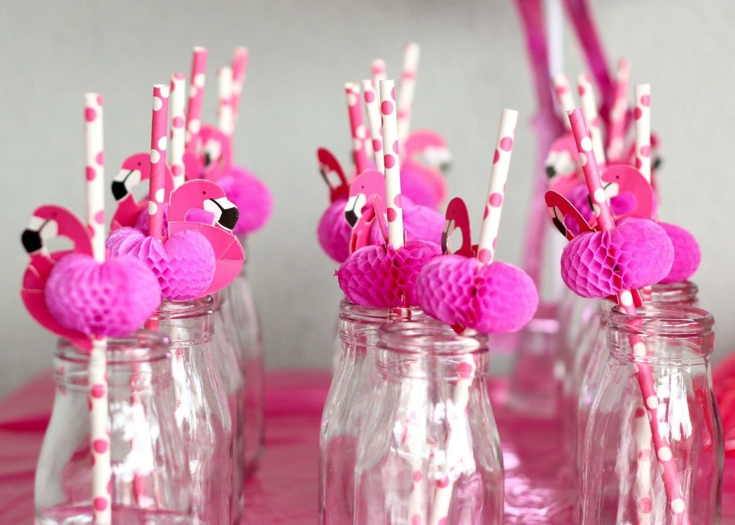 flamingo-featured-min