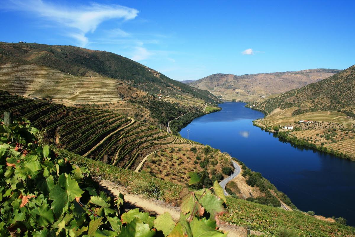 Lua de mel: Regiões com vinícolas na Europa