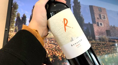 Renacer-Malbec-2014-juntandoaspanelas_preview