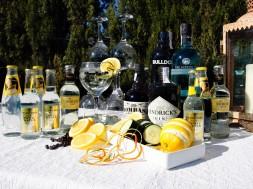 gin tonica