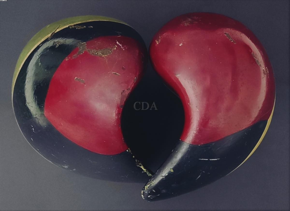 Coração - Mario Cravo Júnior