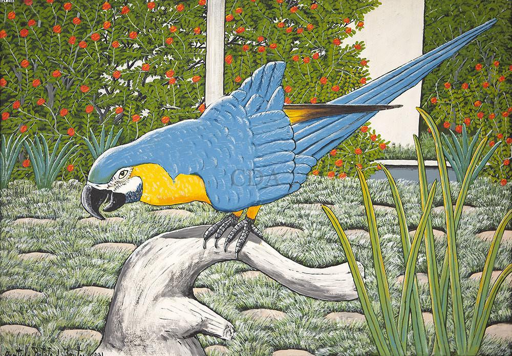 Arara Azul - Agostinho Batista de Freitas (1927-1997)