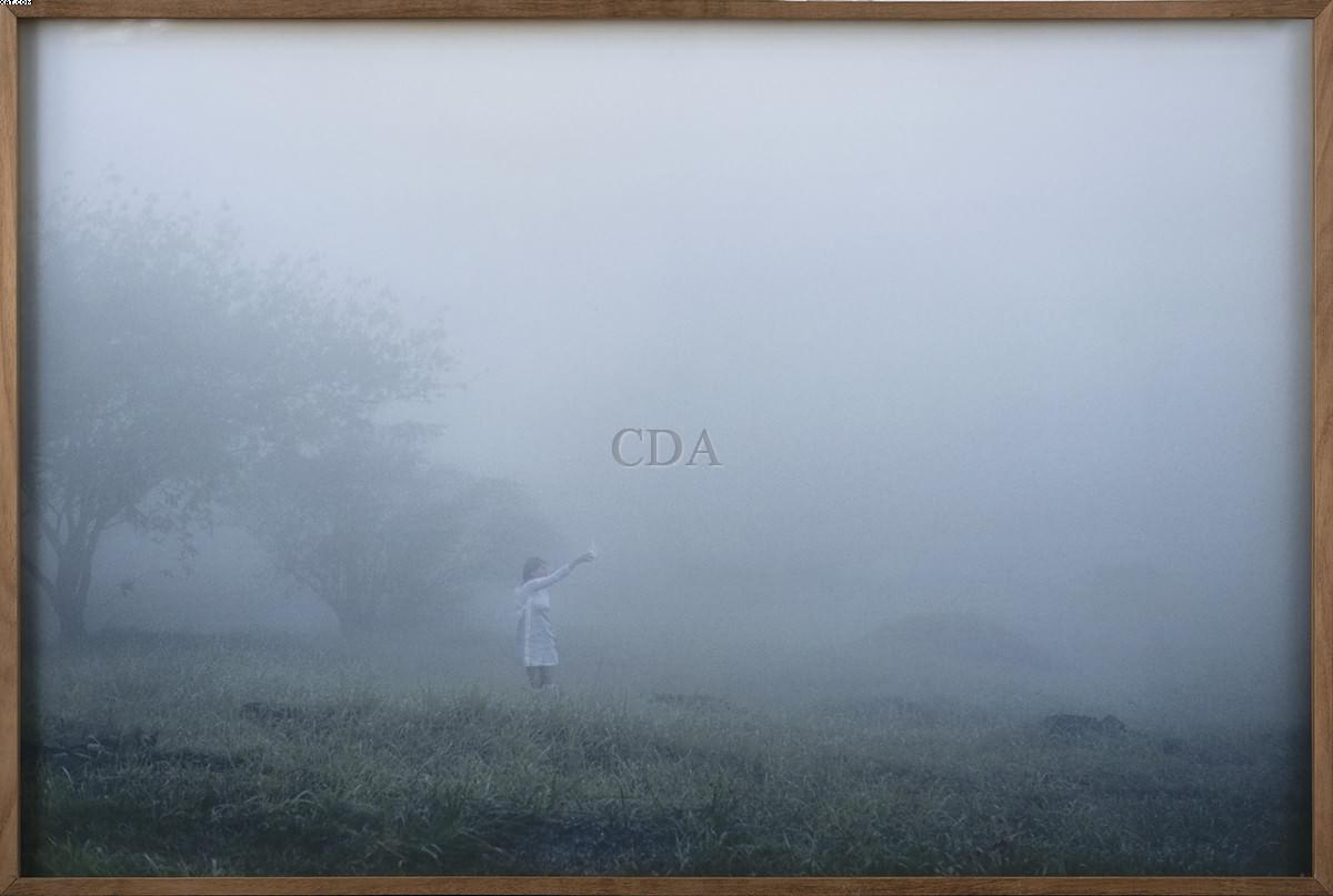 A coleta da neblina - Brigida Baltar - Brígida Baltar