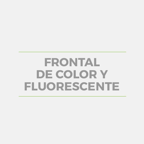FRONTAL DE COLOR Y FLUORESCENTE