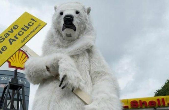 Alerta en el Ártico: Shell ya puede perforar en la zona