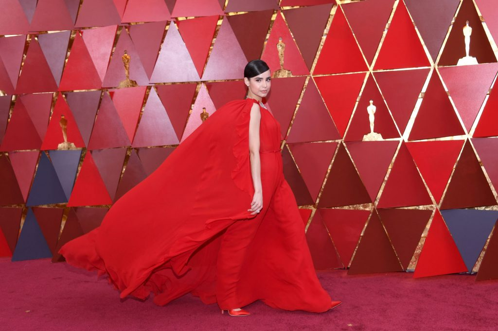 HOLLYWOOD, CA - MARCH 04: Sofia Carson attends the 90th Annual Academy Awards at Hollywood & Highland Center on March 4, 2018 in Hollywood, California. Kevork Djansezian/Getty Images/AFP