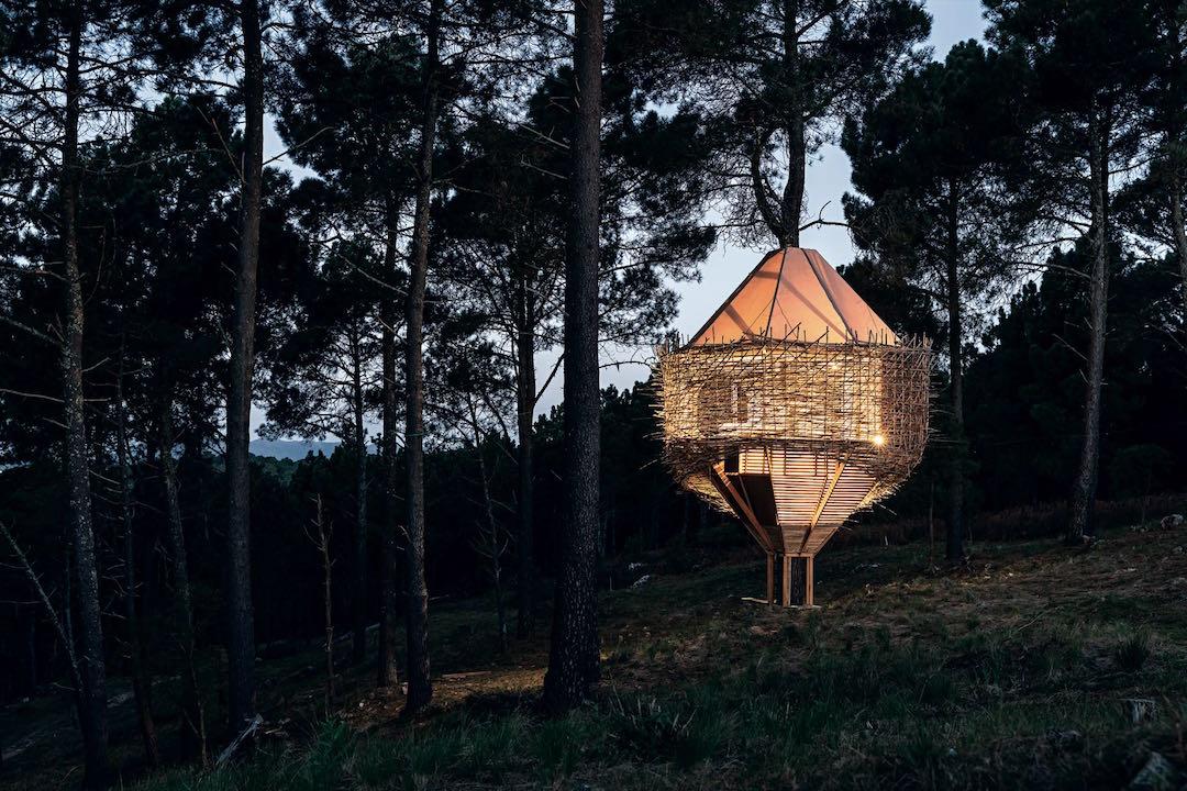 El nido: una vanguardista casa del árbol  en Córdoba