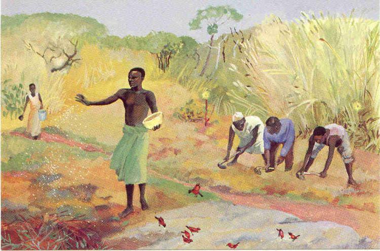 Mateus 13,1-23: A semente que cai em diferentes solos [Ildo Bohn Gass]