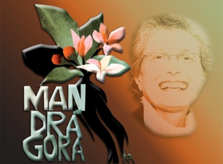 Revista Mandragora lança edição virtual sobre Ivone Gebara