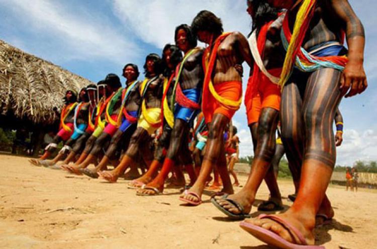 PEC sobre demarcação de terras indígenas deve voltar à tona em 2015