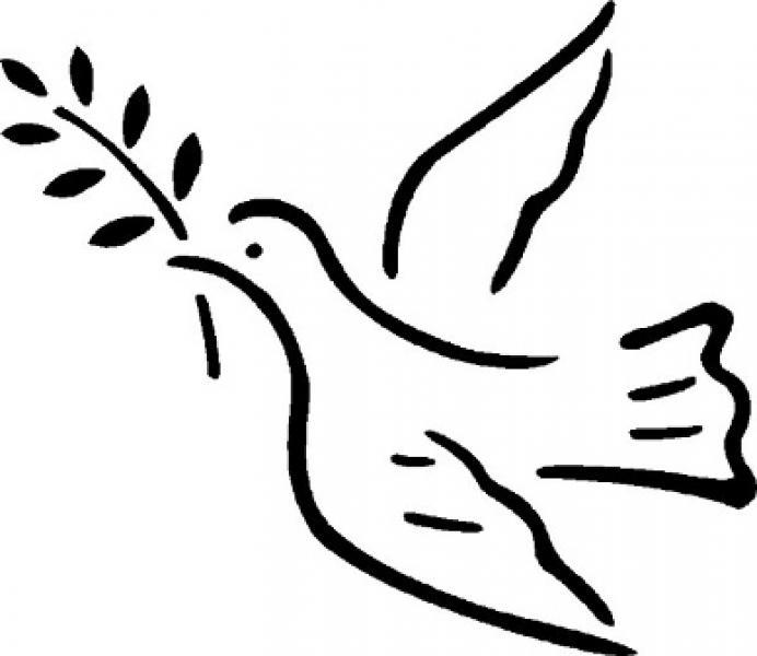 Pela Paz