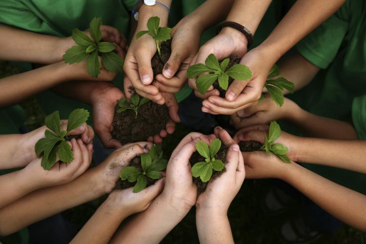 Com crescimento não se alcança a sustentabilidade [Marcus Eduardo de Oliveira]