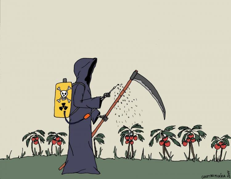 Agrotóxicos: 70% dos alimentos in natura consumidos no Brasil estão contaminados