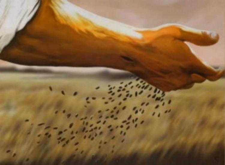 """""""Quem põe a mão no arado e olha para trás não serve para o Reino de Deus"""" (Lc 9, 51 –62) [Tomaz Hughes SVD]"""