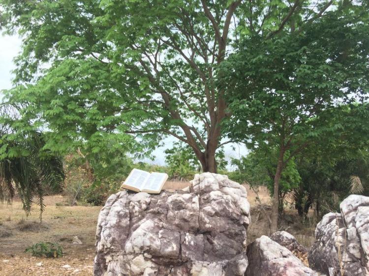 """CEBI-GO: Formação Bíblica em Novo Brasil: """"Cuidando da Casa Comum"""""""
