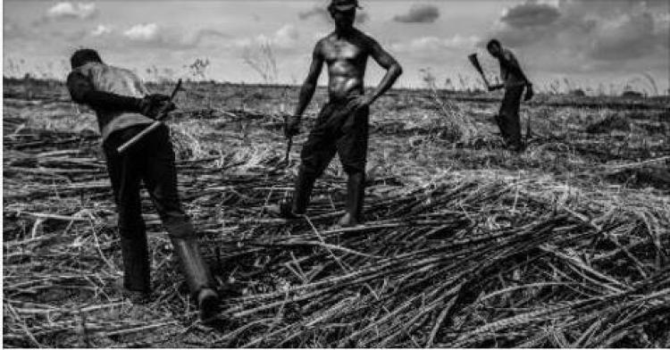 Projeto de lei que altera conceito de trabalho escravo é um retrocesso social, afirma MPF